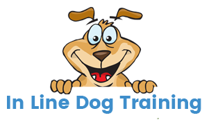 Inline Dog Training