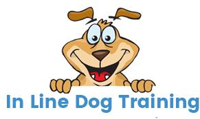 Inline Dog Training